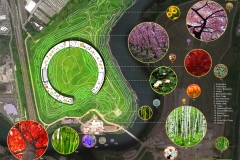Site Plan and Indigenous Plantings